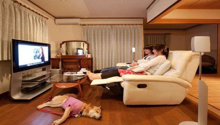 軽井沢で大型犬と宿泊できる宿