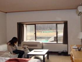 山中湖で大型犬と泊まれる宿