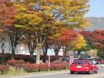 諏訪湖畔の紅葉