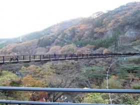 鬼怒川温泉の紅葉