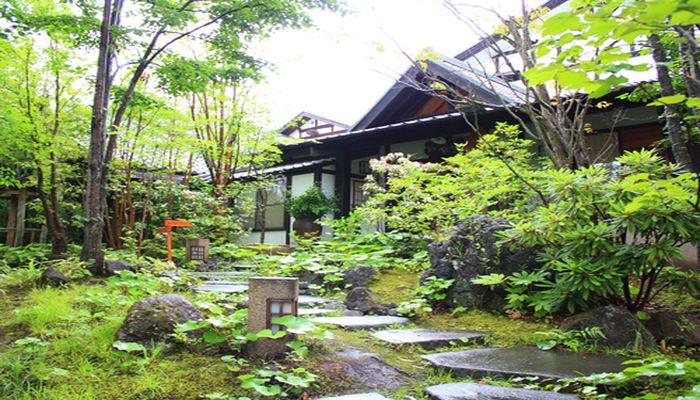 草庵 秋桜