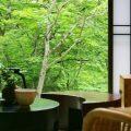 台温泉やまゆりの宿(岩手県花巻)を写真で紹介(客室・料理)