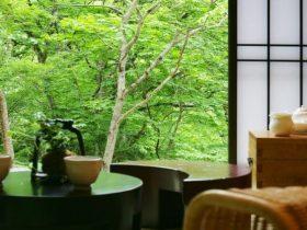 台温泉やまゆりの宿